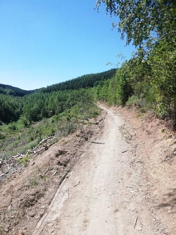Mountainbike route 4 in Houffalize