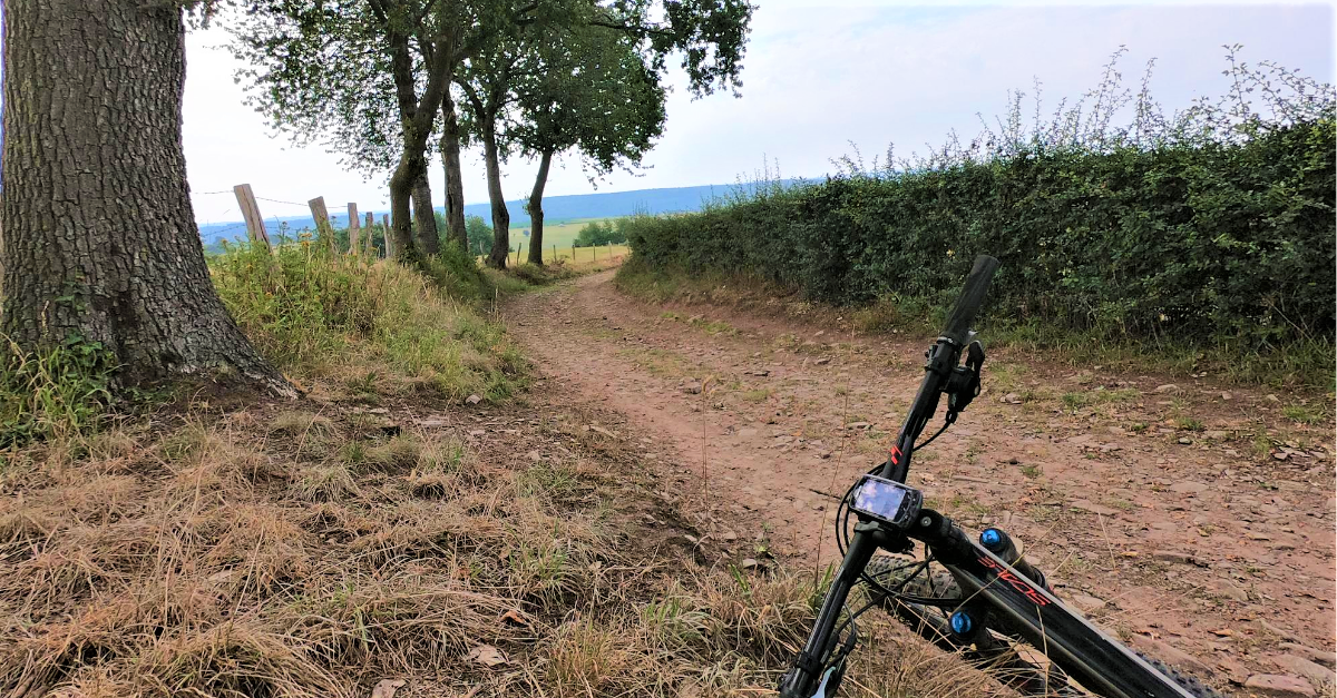Mtb route in Theux